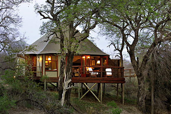 Kruger Park Amp Private Game Reserves Safari Guide
