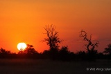 Another spectacular sunset at Hwange