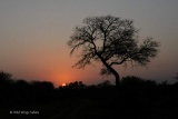 Burnt african sunset