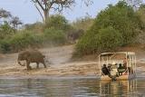 Botswana - Chobe River