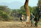 Game walk lower zambezi