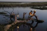 Lighting lamps lower zambezi
