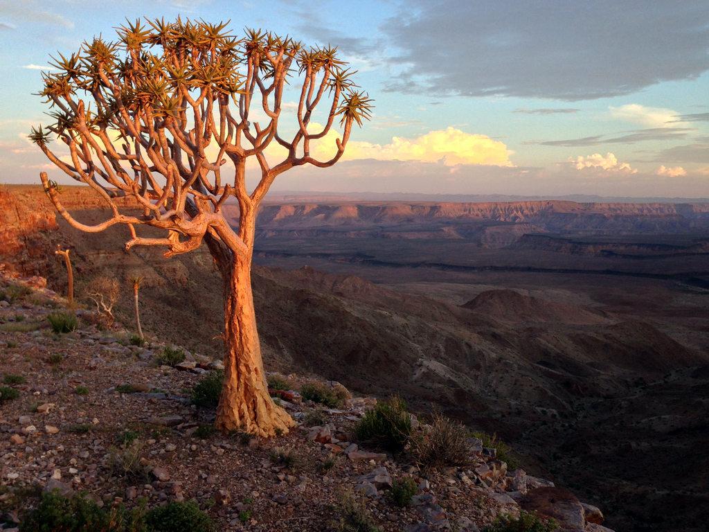 Namibia Photography Tours