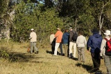 Okavango bush walk